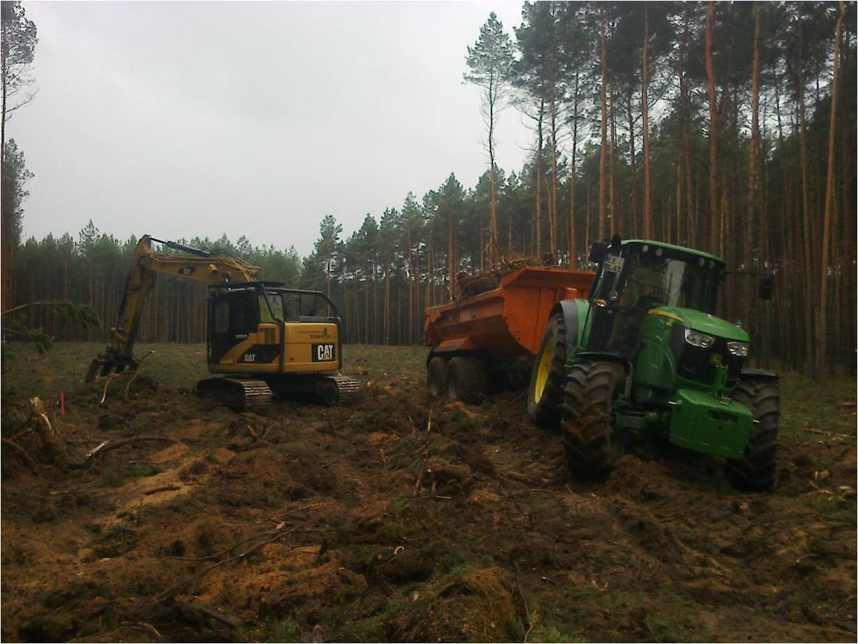 Rodungsarbeiten für einen Windpark in Oelsig
