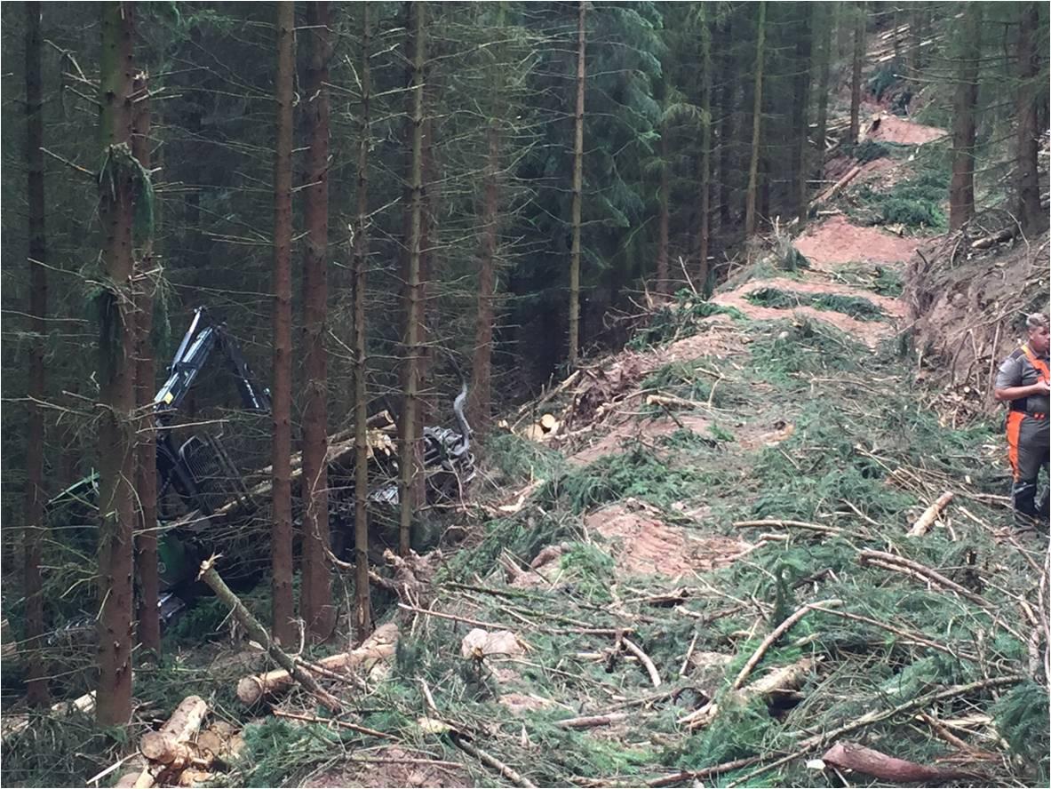 Holzeinschlag und Wegebau im Steilhang in Berlingerode