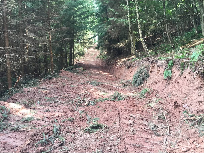 Wegebau im Steilhang in Berlingerode